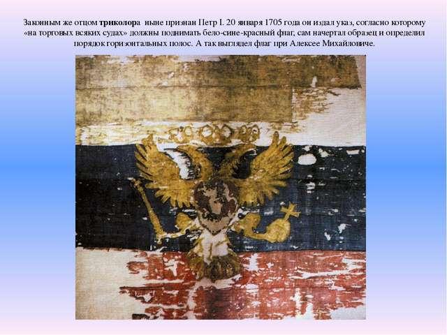 Законным же отцом триколора ныне признан Петр I. 20 января 1705 года он издал...