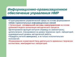 Информационно-организационное обеспечение управления НМР Структурирование упр