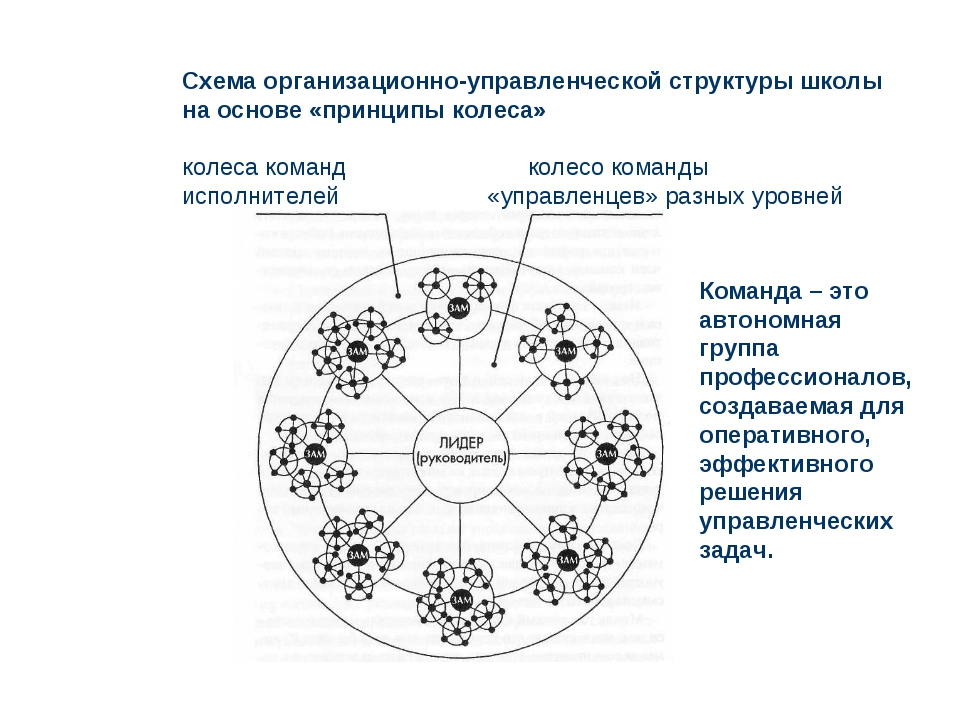 Схема организационно-управленческой структуры школы на основе «принципы колес...