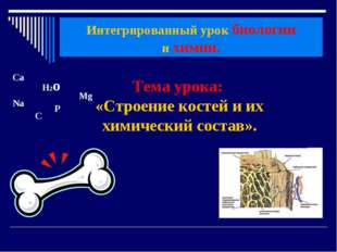 Тема урока: «Строение костей и их химический состав». Интегрированный урок би