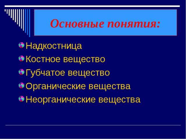 Основные понятия: Надкостница Костное вещество Губчатое вещество Органические...