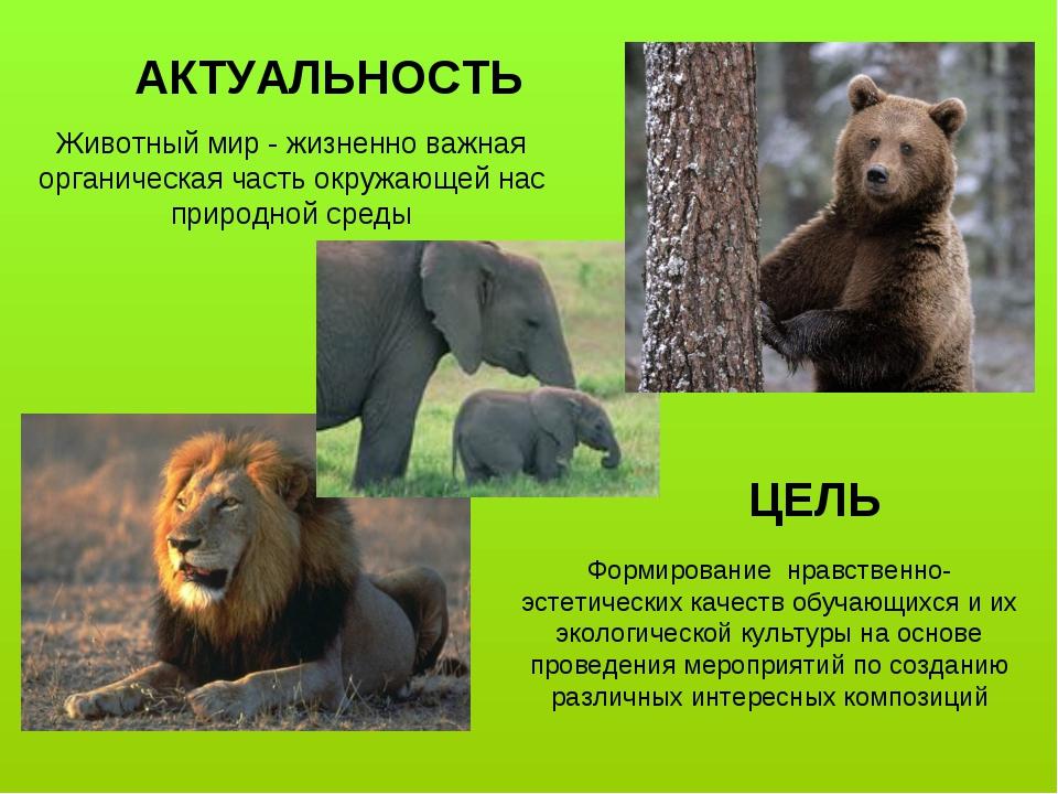 Животный мир - жизненно важная органическая часть окружающей нас природной ср...