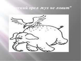 """Русский орел мух не ловит"""