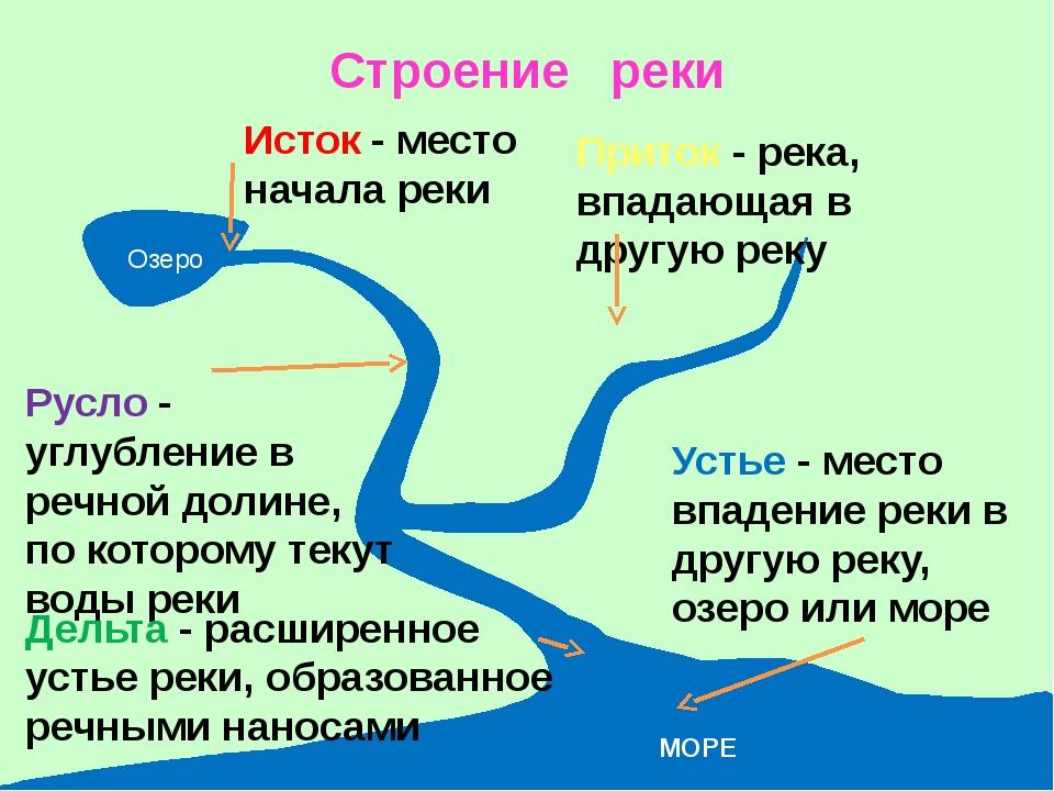Строение реки Озеро Исток - место начала реки Русло - углубление в речной дол...