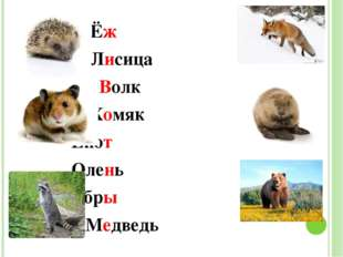 Ёж Лисица Волк Хомяк Енот Олень Бобры Медведь