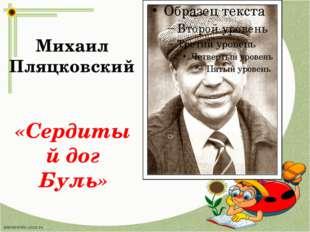 Михаил Пляцковский «Сердитый дог Буль»