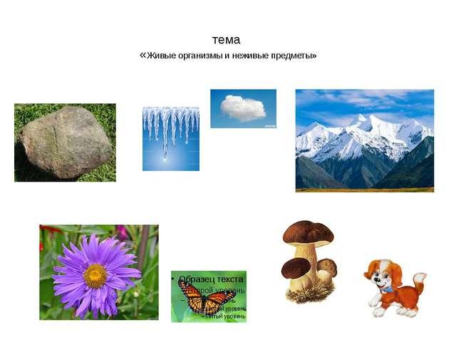 тема «Живые организмы и неживые предметы»