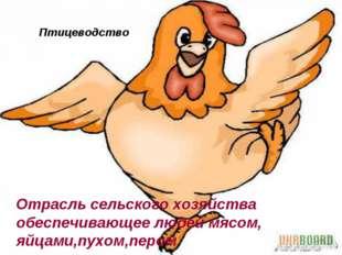 Птицеводство Отрасль сельского хозяйства обеспечивающее людей мясом, яйцами,п