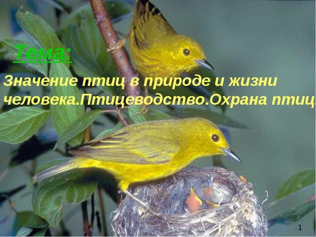 Тема: 1 Значение птиц в природе и жизни человека.Птицеводство.Охрана птиц.