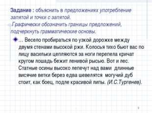 Задание : объяснить в предложениях употребление запятой и точки с запятой. Гр