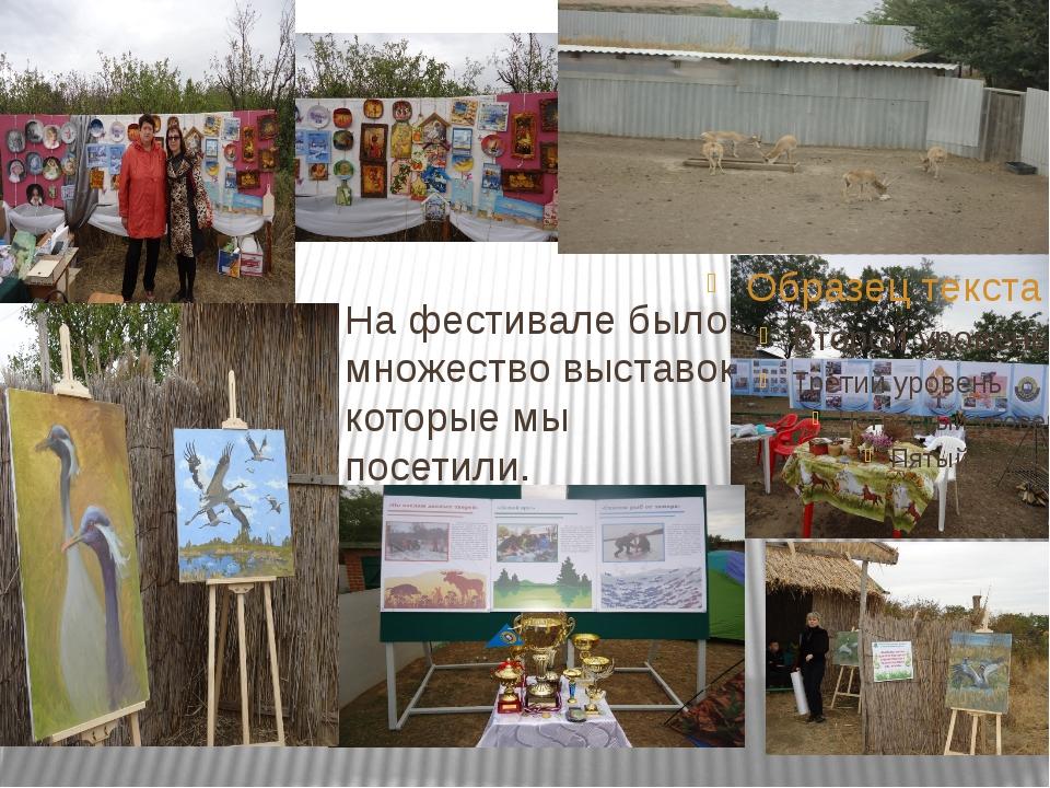 На фестивале было множество выставок, которые мы посетили.