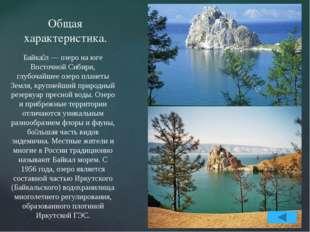 География озера Байкал. Озеро Байкал находится на юге Восточной Сибири. В фор
