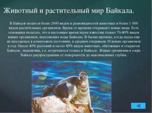 В озере насчитывается 58 видов рыб. Наиболее известные - омуль, сиг, хариус,