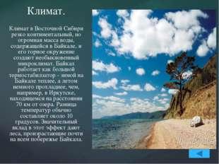 Влияние Байкала не сводится только к регулированию температурного режима. Из