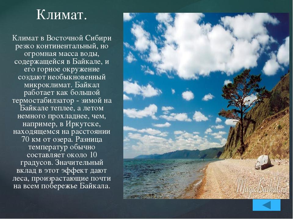 Влияние Байкала не сводится только к регулированию температурного режима. Из...