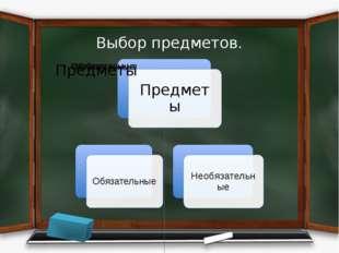 Выбор предметов.