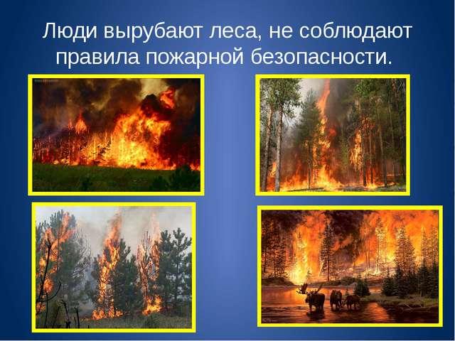 Люди вырубают леса, не соблюдают правила пожарной безопасности.
