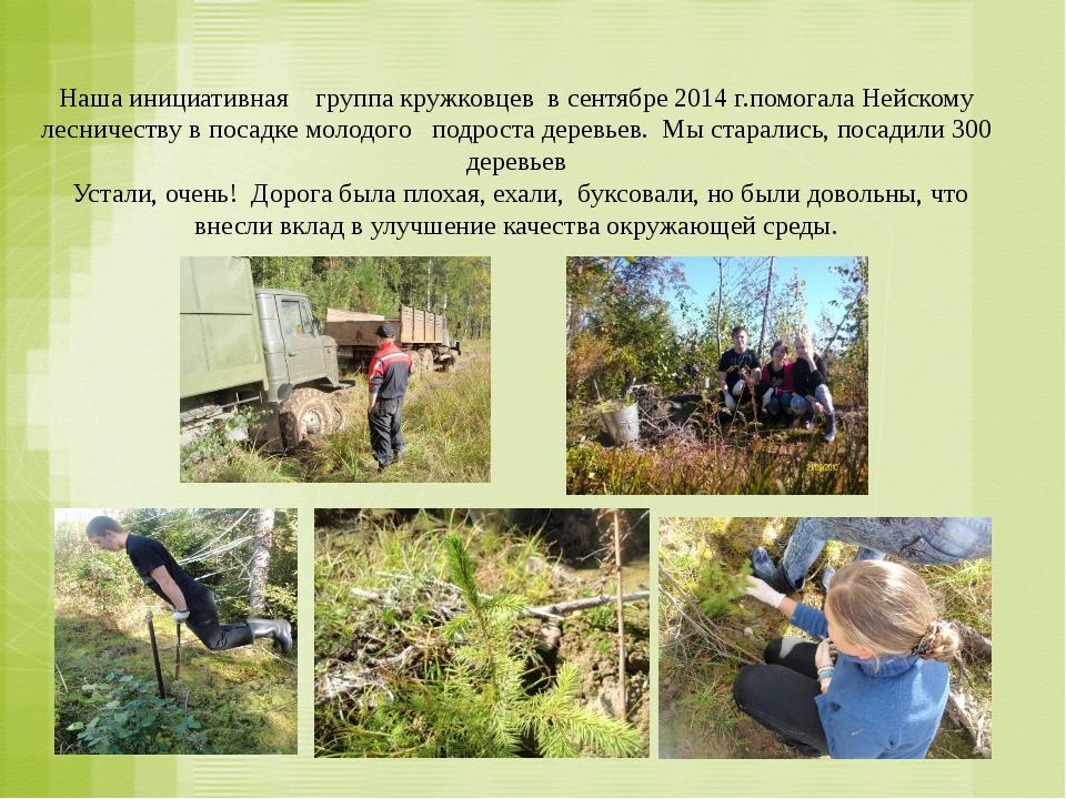 Наша инициативная группа кружковцев в сентябре 2014 г.помогала Нейскому лесн...