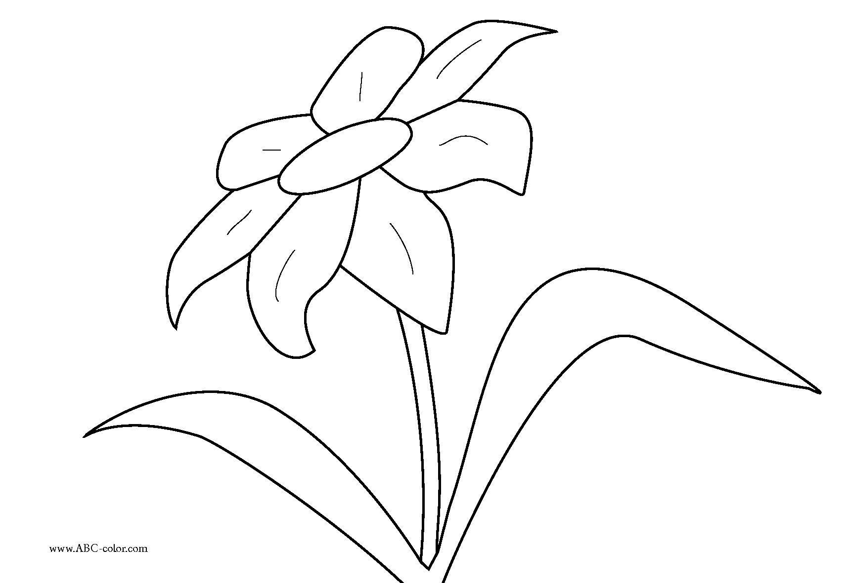 http://www.abc-color.com/image/coloring/flowers/001/flower-001/flower-001-bitmap-coloring.png