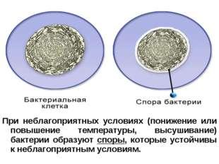 При неблагоприятных условиях (понижение или повышение температуры, высушивани