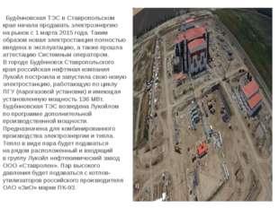 Будённовская ТЭС вСтавропольском крае начала продавать электроэнергию нары