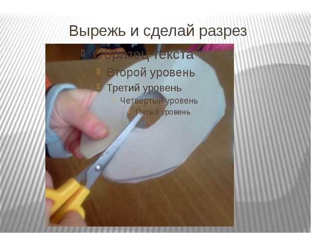 Вырежь и сделай разрез