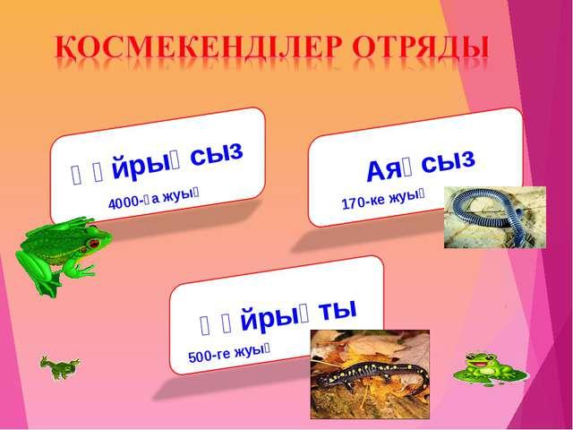 Құйрықсыз Аяқсыз Құйрықты 500-ге жуық 4000-ға жуық 170-ке жуық
