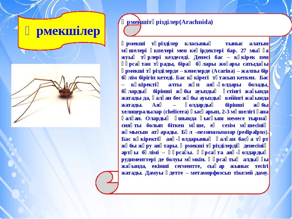 Өрмекшілер Өрмекшітәрізділер(Arachnida) Өрмекші тәрізділер класының тыныс ал...