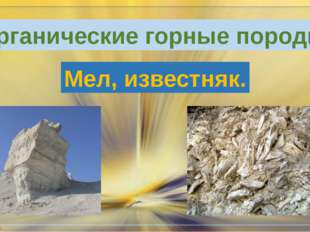 Органические горные породы. Мел, известняк.