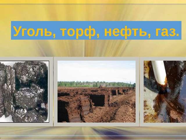 Уголь, торф, нефть, газ.