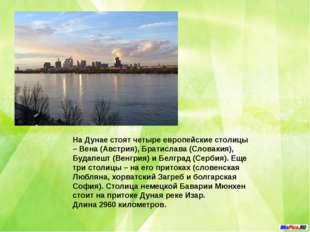 Днепр река в Европе, протекает по территории России (485 км.), Беларуси (595