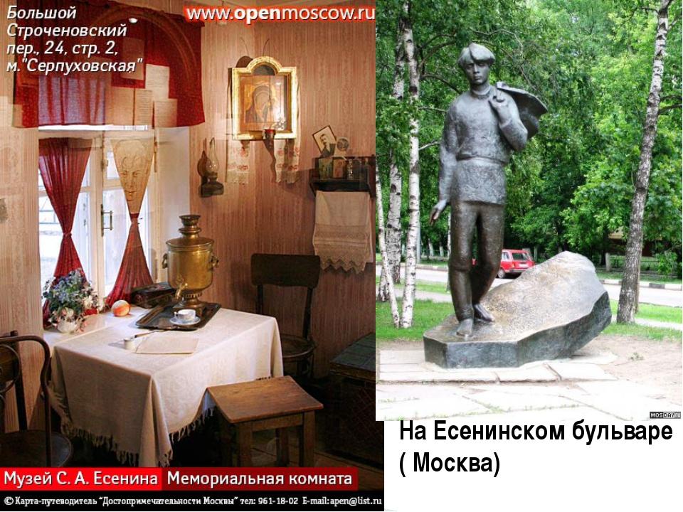 На Есенинском бульваре ( Москва)