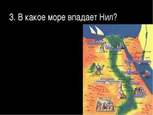 3. В какое море впадает Нил?