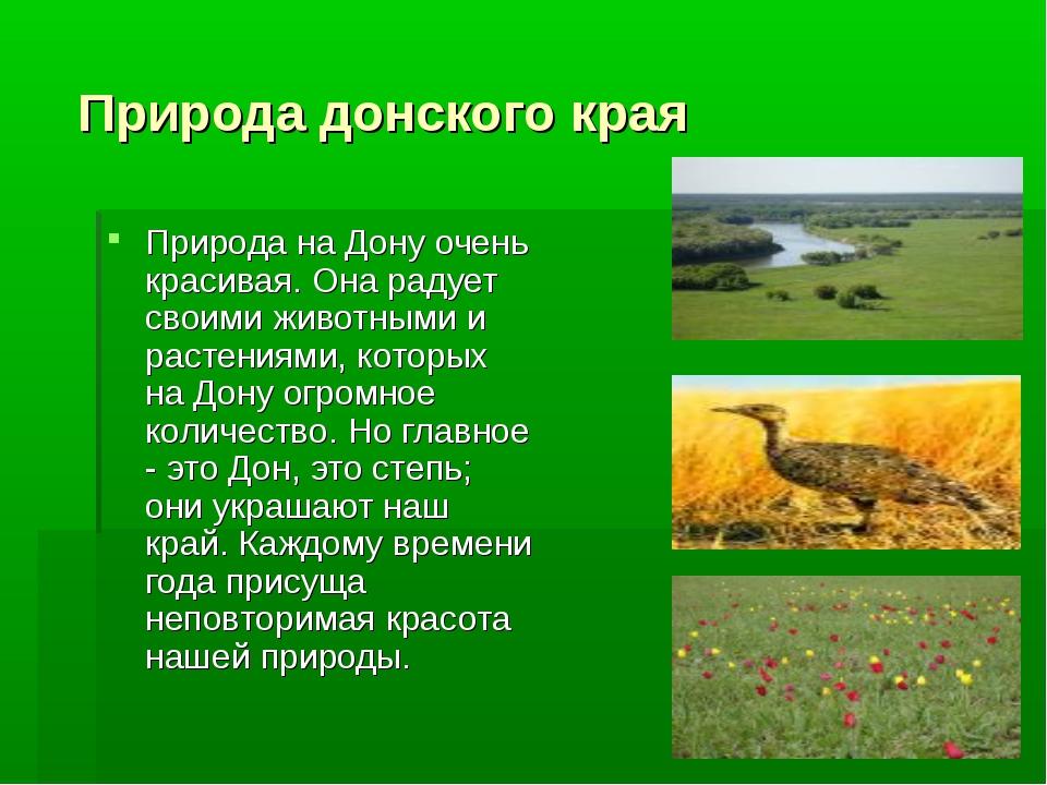 Природа донского края Природа на Дону очень красивая. Она радует своими живо...