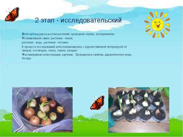2 этап - исследовательский Дети наблюдали за ростом растений, проводили опыты...
