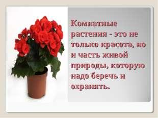 Комнатные растения - это не только красота, но и часть живой природы, котору