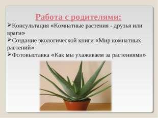 Работа с родителями: Консультация «Комнатные растения - друзья или враги» Со