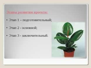 Этапы развития проекта: Этап 1 – подготовительный; Этап 2 - основной; Этап 3