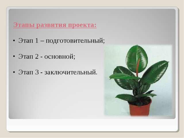 Этапы развития проекта: Этап 1 – подготовительный; Этап 2 - основной; Этап 3...