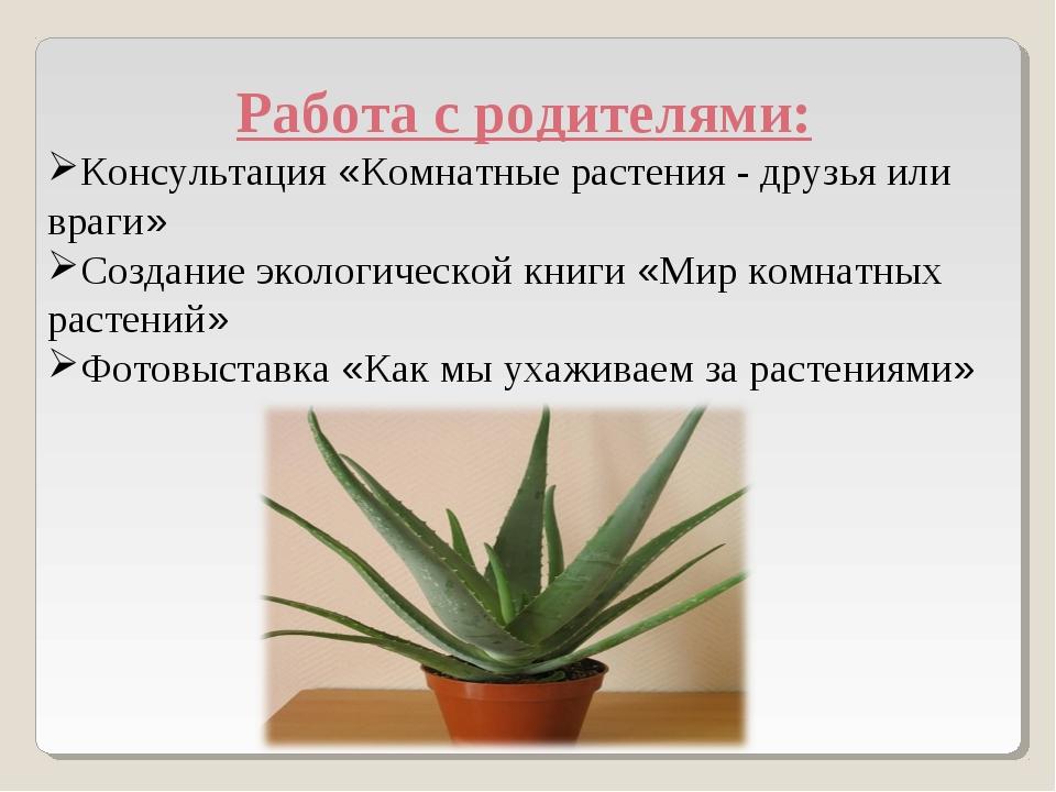 Работа с родителями: Консультация «Комнатные растения - друзья или враги» Со...