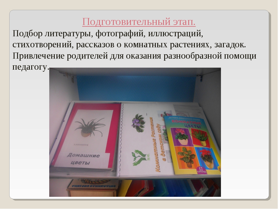 Подготовительный этап. Подбор литературы, фотографий, иллюстраций, стихотворе...