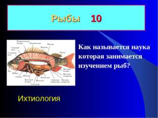 Как называется наука которая занимается изучением рыб? Рыбы 10 Ихтиология