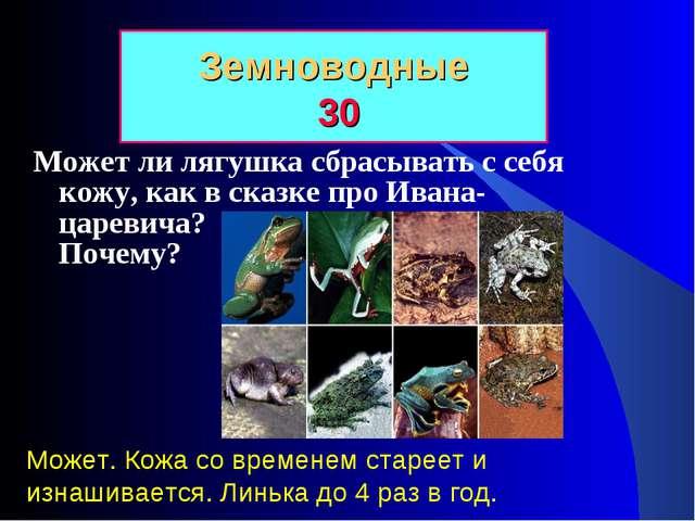Может ли лягушка сбрасывать с себя кожу, как в сказке про Ивана-царевича? Поч...