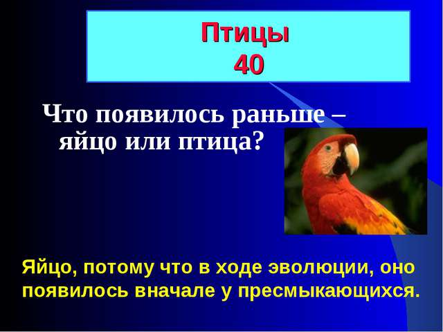 Что появилось раньше – яйцо или птица? Птицы 40 Яйцо, потому что в ходе эволю...