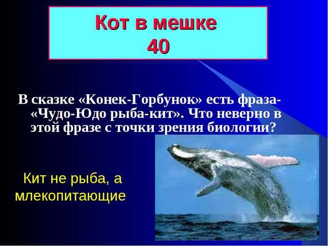В сказке «Конек-Горбунок» есть фраза- «Чудо-Юдо рыба-кит». Что неверно в этой...