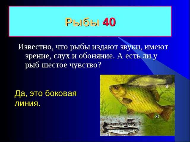 Рыбы 40 Да, это боковая линия. Известно, что рыбы издают звуки, имеют зрение,...