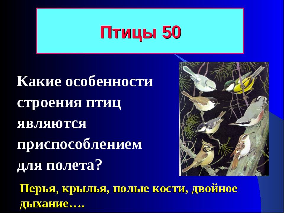 Какие особенности строения птиц являются приспособлением для полета? Птицы 50...