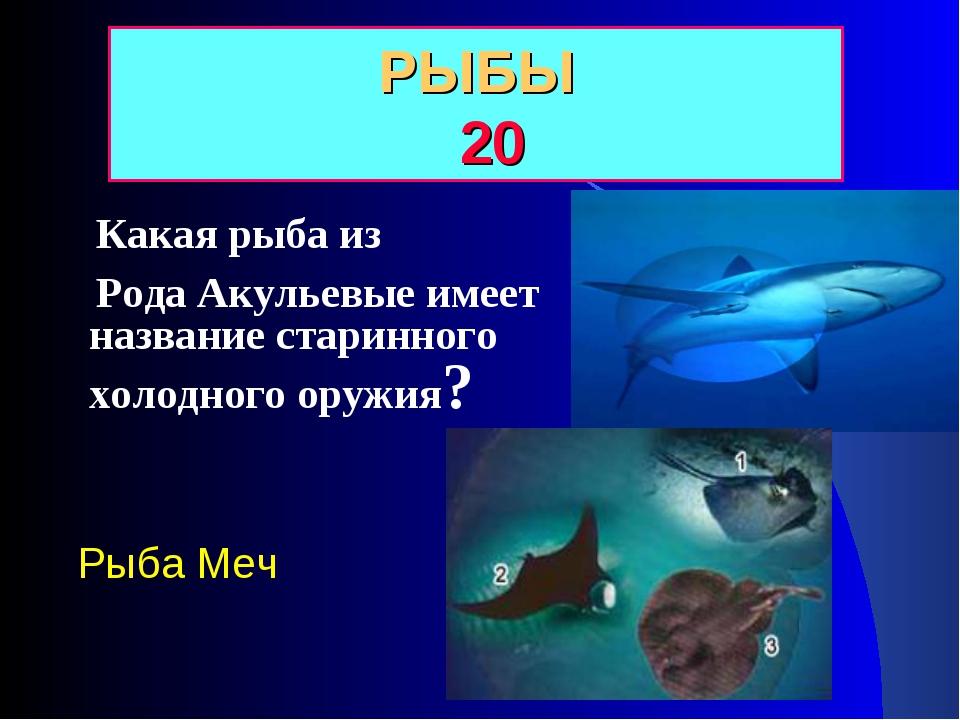 Какая рыба из Рода Акульевые имеет название старинного холодного оружия? РЫБ...