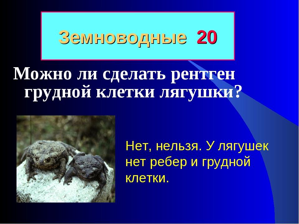 Можно ли сделать рентген грудной клетки лягушки? Земноводные 20 Нет, нельзя....