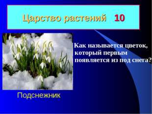 Царство растений 10 Как называется цветок, который первым появляется из под с